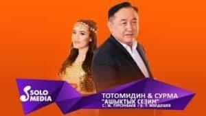 Тотомидин & Сурма - Ашыктык сезим